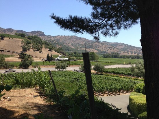 Pine Ridge Winery : Stagg's Leap