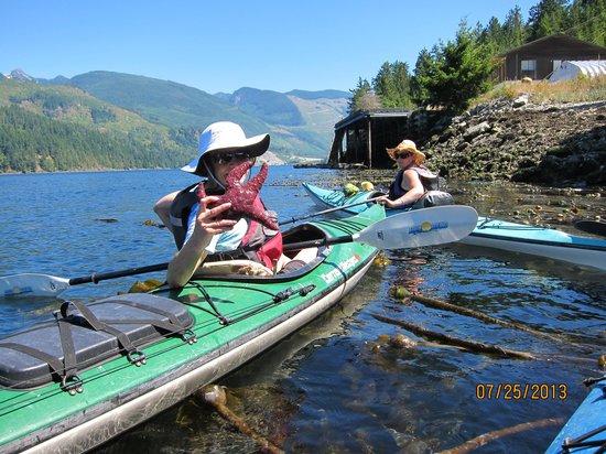 West Coast Wilderness Lodge: Kayak tour with Katherine