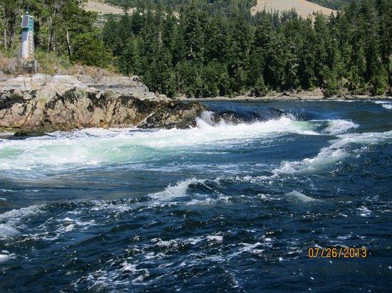 West Coast Wilderness Lodge: Skookumchuck rapids from Zodiac