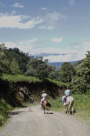 Hacienda Primavera Wilderness Ecolodge: Going horseback