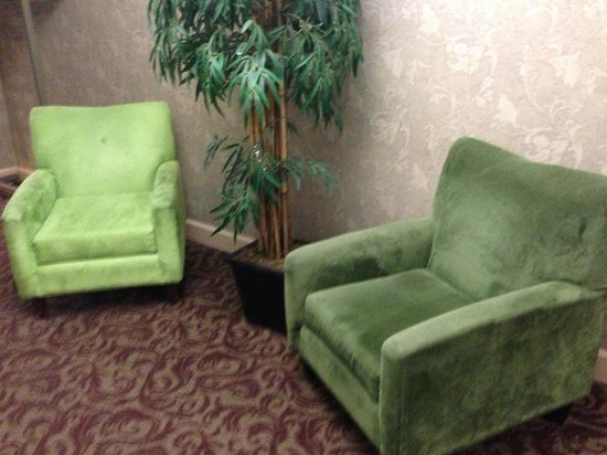 Red Lion Hotel Salem: Groovy green chairs