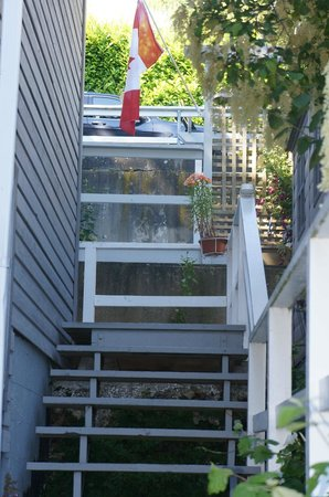 Ocean Rose Bed And Breakfast: Stairs