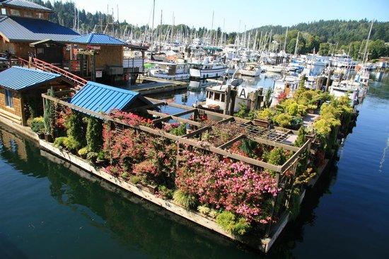Molly's Reach Restaurant : walk around Gibsons Harbour