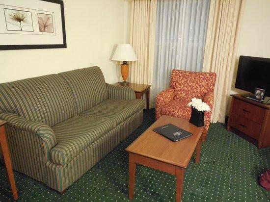 Residence Inn San Antonio North/Stone Oak: Living area