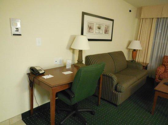 Residence Inn San Antonio North/Stone Oak: Desk