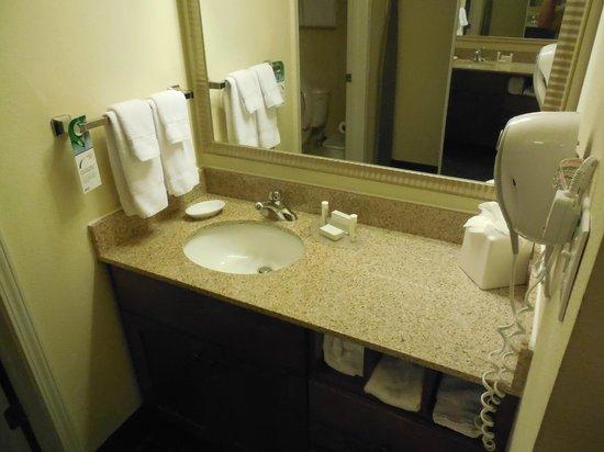 Residence Inn San Antonio North/Stone Oak: Lavatory