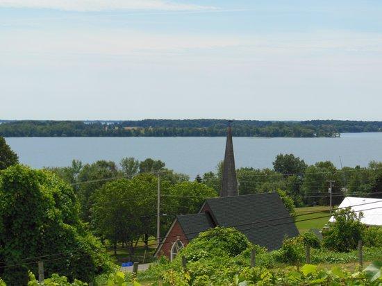 The County Cider Company: Lake Ontario Vista