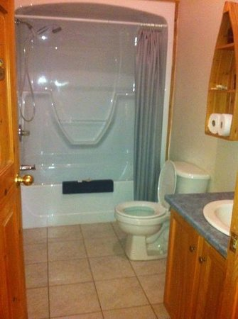 Irwin Lake Chalet: Bathroom