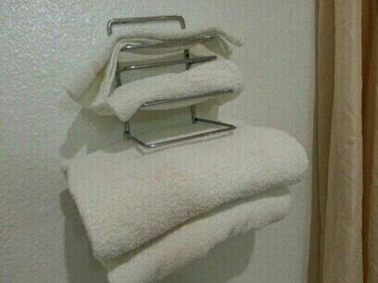 Rodeway Inn SeaTac: towels