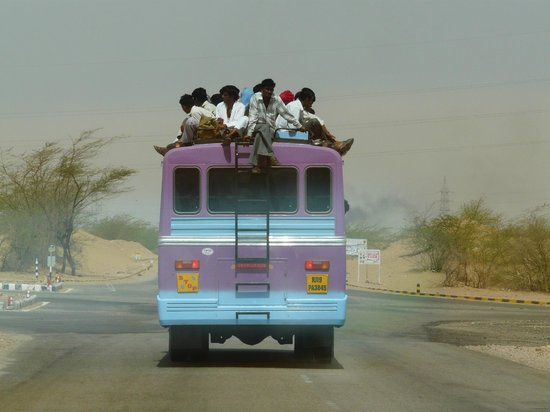 Real Tours India - Private Day Tours: on the road