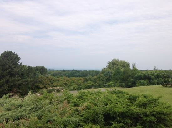 Country Driving Tours of Vermont: lake Champlain in the distance