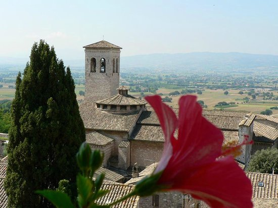 Hotel Giotto Assisi: The view from our room, complete with a planter filled with blooming hibiscus!