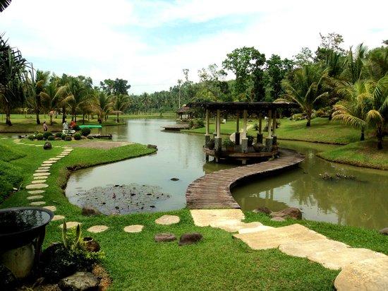 Rafael Farm