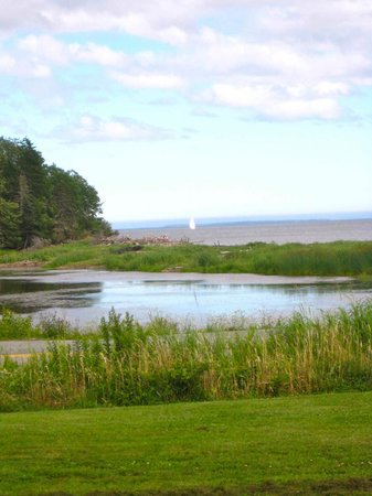 Atlantic View Motel & Cottages: View of the marsh/beach