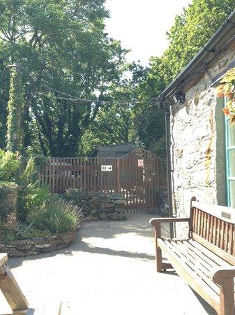 Caffi Padarn, garden