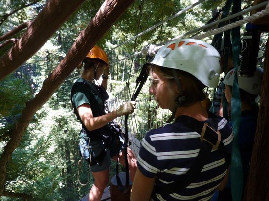 Mount Hermon Adventures: Showing the Safety Harnesses