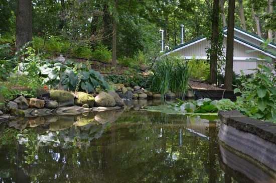 The Speckled Hen Inn: Waterfall Pond