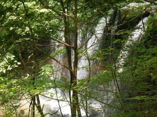 Otome Waterfall: 上から見た乙女の滝