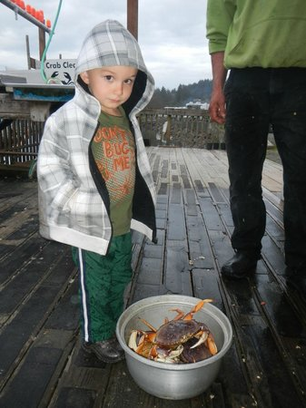 Kelly's Brighton Marina: Aiden inspecting the crabs for us