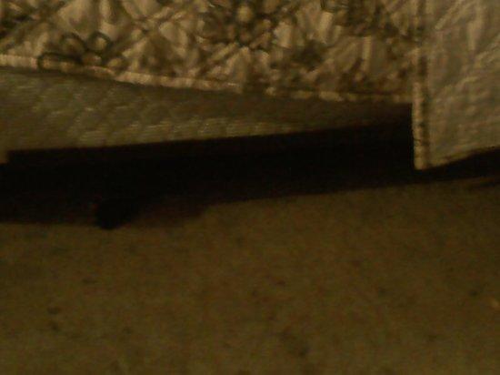 Rockies Inn: the way the housekeeping makes beds