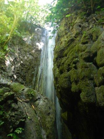 El Remanso Lodge: cascada