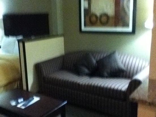 "Comfort Suites: ""living area"""