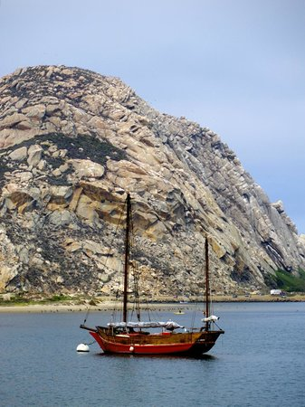 456 Embarcadero Inn & Suites: Plenty of great views of Morro Rock
