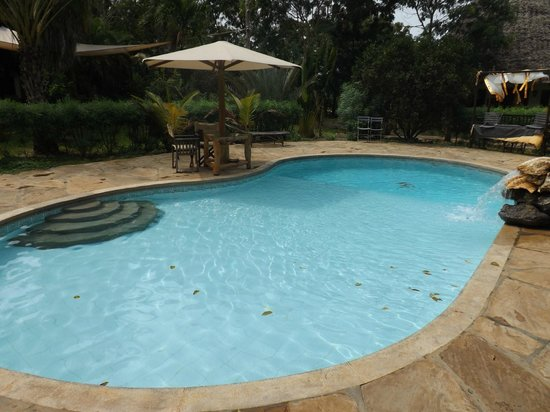 Spice of the Coast: Piscina