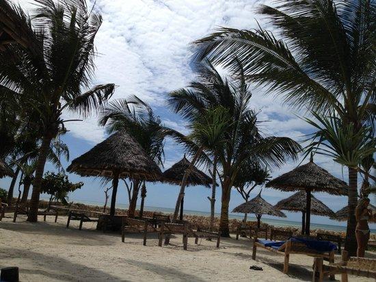 Samaki Lodge & Spa: gli ombrelloni......