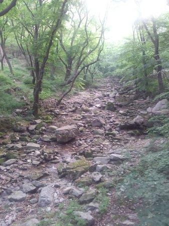 Gyeryongsan National Park: Peace