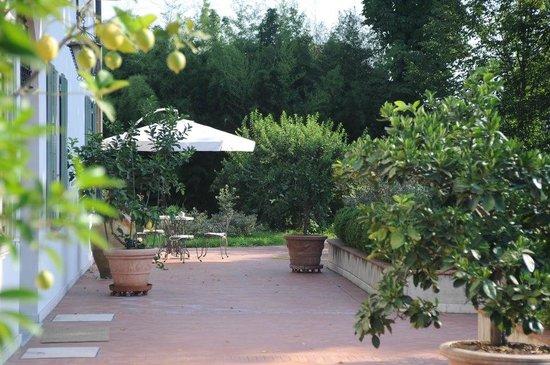 Al melograno b b bologna italia prezzi 2018 e recensioni for Albero per piccolo giardino