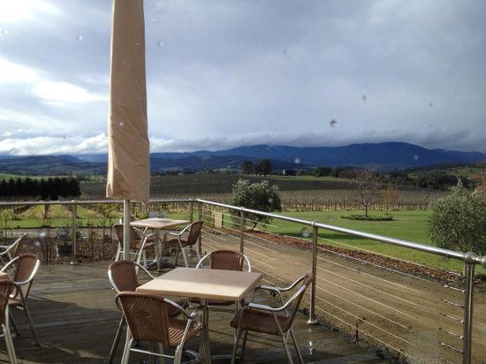 Wild Wombat Winery Tours: winery view