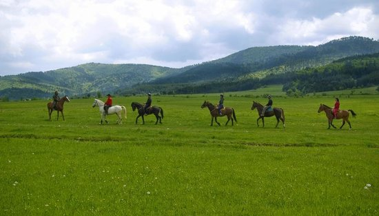 Equestrian Center Sivek: Group riding