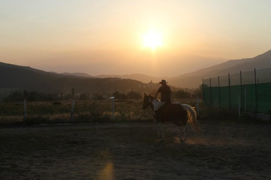 Equestrian Center Sivek: on sunset