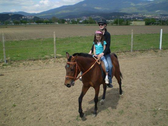 Equestrian Center Sivek: kids
