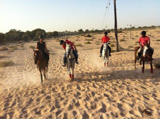 Winners Equestrian Club