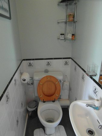 nice and clean toilet
