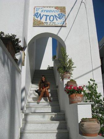 Antonia Studios: ingresso