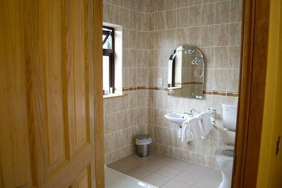 Clonamore House Hotel : Wheelchair accessible bathroom
