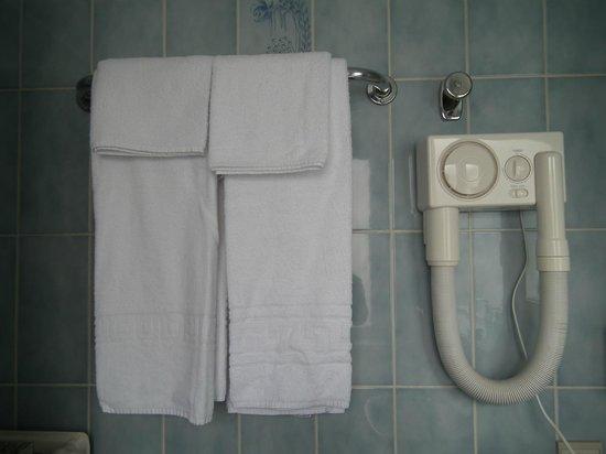 Hotel Argus Brussels: Handduk