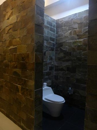 The Dipan Resort Petitenget: toilet