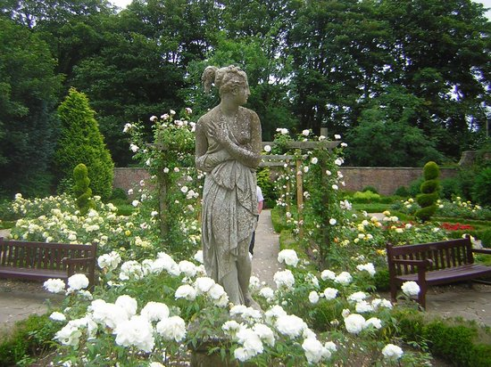 Sewerby Hall and Gardens : Rose Garden