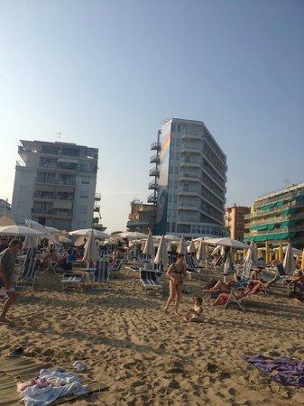 Hotel American: Stranden