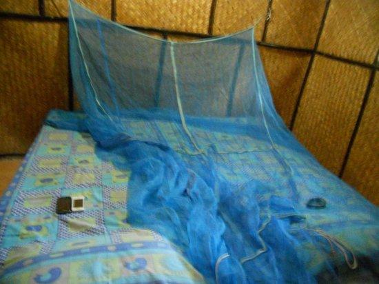 Island Vinnies Tropical Beach Cabana: Room