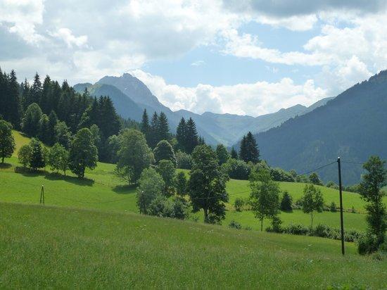 Oberguggenhausen Pension: green!!