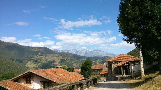 Posada Valle del Oso : Vista de Picos de Europa desde Lerones.