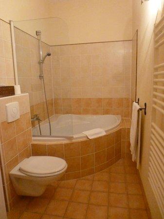 Chateau de l'Hoste: Bathroom