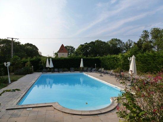 Chateau de l'Hoste: Pool