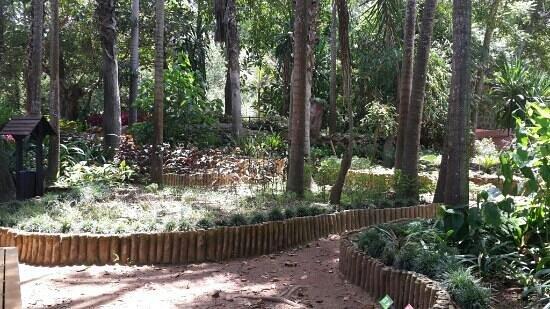 Les Jardins Exotiques de Bouknadel : the garden