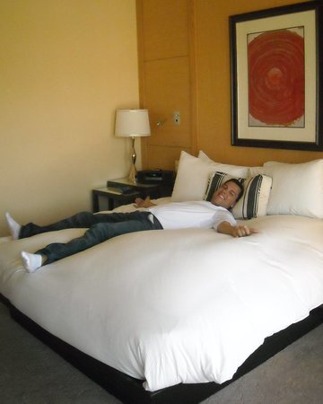 Sofitel Los Angeles at Beverly Hills: perfect bed!